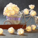 DEWEL LED イルミネーション 電飾 ライト バラ 電池式 ミックス 省エネ 屋外 防水 クリスマス バーディー プロポーズ用 祝日