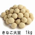 きなこ大豆 1kg 業務用大袋 南風堂のきなこたっぷり大豆豆菓子