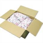 煎り大豆テトラパック 1kg×6 南風堂 業務用ケース 九州産フクユタカ 個包装