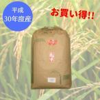 28年産 京都丹波産 コシヒカリ 未検査 玄米30kg(精米無料) こしひかり