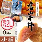 干し柿 富山干柿 小箱サイズ2L×12個...