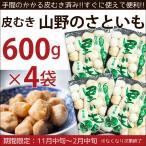 山野のさといも 皮むき 600g×4袋 里芋 富山県産