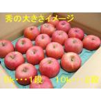 信州りんご・サンふじ 秀 約5kg