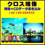クロス現像+CDデータ書き込み  FUJI  KODAK AGFA LOMO リバーサルフィルムから→C−41現像   1本から受付