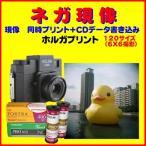 ネガフィルム HOLGA ブローニーフィルム ネガ現像  同時プリント FUJI PRO400  Kodak Ektar PORTRA  1本から受付