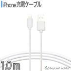 ピザプラネットで買える「iPhone X 8 7 6 Plus 5 SE USB 充電ケーブル コード USBケーブル 1m 100cm 充電器 データ通信 アイフォン アイホン ポイント消化」の画像です。価格は652円になります。