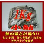 小 鮎(Mサイズ 1Kg)