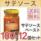 アヤム サテソース 100g 12個セット サテ インドネシア料理 焼き鳥 ペースト アジアン料理 送料無料
