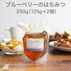 はちみつ ブルーベリーのはちみつ 250g(125g×2袋)  100%純粋 カナダ産 キャップ付き スタンドパック 蜂蜜 抗菌作用 メール便A TSG