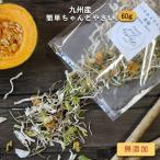 ステイホーム応援 80g 九州産 乾燥野菜(玉ねぎ、大根、ごぼう、キャベツ、カボチャ) 国産 簡単ちゃんとやさい 味噌汁 メール便A TSG