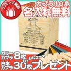 KAPLA (カプラ) カプラ280 デザインブック赤1冊セット (小冊子付き) 積み木 つみき ブロック 知育玩具