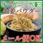 【メール便OK】オーガニックジンジャーパウダー120g(60g×2袋)<br>まるごと生姜粉末!(有機JAS)