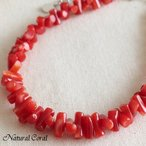 血赤珊瑚 ちあかさんご サンゴ ブレスレット 枝 ヤタラ B 送料無料