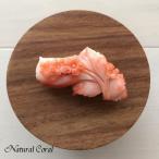 ピンク珊瑚 ぴんくさんご ブローチ 桜 ナチュラルコーラル 送料無料