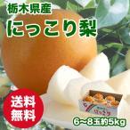 びっくり大玉!栃木県産にっこり梨 5kg 7〜9個入
