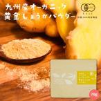 しょうが パウダー 70g 鹿児島県産 オーガニック 国産 有機 黄金生姜 粉末