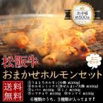 肉 黒毛和牛 牛肉 松阪牛 ホルモン 焼肉 もつ鍋 おまかせホルモンミニセット 約500g ( ミノ センマイ シマチョウ レバー 赤センマイ)