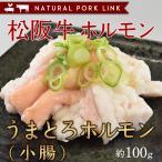 肉 黒毛和牛 牛肉 松阪牛 小腸 ホルモン もつ鍋 焼き肉 100g