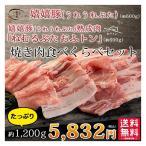 焼き肉 焼肉 バーベキュー BBQ メガ盛り 約1.2キロ  熟成肉 豚肉 おふトン・嬉嬉豚 食べくらべ(各200g×3P)約1200g