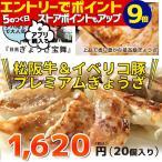 餃子 松阪牛 イベリコ豚 (20個入り)