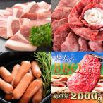 ショッピングバーベキュー バーベキュー BBQ 肉 国産和牛 セット 大人 メガ盛り 約10人前 国産 黒毛和牛 牛肉 豚肉(約2080g)
