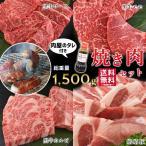 焼き肉 焼肉 バーベキュー BBQ  肉 メガ盛り おうち焼肉セット タレ付き 約4〜5人前 牛肉 豚肉 (約1480g)
