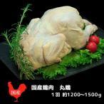 鶏肉 丸ごと 丸鶏 国産(1羽約1200g)クリスマス ローストチキン バーベキュー BBQ 韓国鍋 かたまり