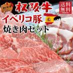 お中元 御中元 牛肉 黒毛和牛 ギフト 焼き肉 焼肉  松阪牛 A5A4・イベリコ豚 600g