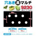 【マルチ】 穴あき黒マルチ9230 10m 大根 とうもろこし用(10mまで郵便配送商品)