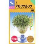 【種】アルファルファ 種 50ml 5袋セット(送料無料)