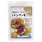 糖質オフ・グルテンフリー パンケーキミッックス 200g(100g×2袋)