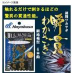 淡水仕掛け・用品 ハヤブサ(Hayabusa)