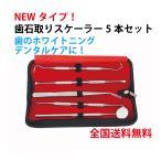 歯 ホワイトニング 歯石とり ヤニとり スケーラー4本セット 最安 自宅で簡単 ステンレス製 送料無料