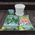 観葉植物の植え替え4点セット 観葉植物の土5L・きれいな鉢底土3L・錠剤肥料プロミック観葉植物用・コティポット220型