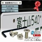 ナンバープレート用ボルト フラットタイプ ステンレス(シルバー) 3本 + 工具付セット