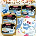 アニモンダ フォムファインステン ミルキース 新発売記念セット / 猫用ウェット 一般食 新発売