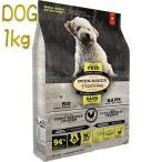 最短賞味2020.3.12・オーブンベイクド 犬用 グレインフリーチキン 小粒 1kg オーブンベークド トラディション ドッグフード 正規品