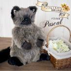 Cuddly(カドリー)猫のぬいぐるみ Pascal(パスカル) 猫グッズ 猫雑貨 猫 ぬいぐるみ リアル 癒し