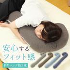 抱き枕 洗える 枕 まくら だきまくら 抱きまくら 妊婦 妊娠中 腰痛 横向き 横向き寝用 ロングサイズ カバー 付き P型 ブラウン グレー D2120-115