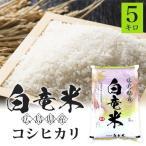 コシヒカリ 5kg 元年産 白竜米 広島県三原市大和町産 注文後に精米