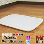 ジュニア 子供用 枕 パラレーヴTM芯 使用 洗える枕 24×37cm