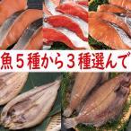 送料無料!魚5種類から3種類選べる(紅鮭、時鮭、秋鮭、真ほっけ、柳がれい)