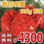 花蟹 - 若花咲蟹(オス) 900g前後 (かに カニ 蟹)
