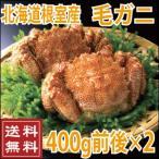 北海道産 毛蟹 400g前後×2尾 (かに カニ 蟹)