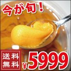塩水エゾバフンウニ 90g×2パック (うに ウニ 送料無料)