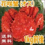 花蟹 - 父の日 花咲蟹(オス) 1kg前後  カニ かに  送料無料
