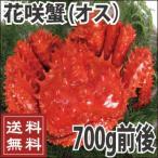 花蟹 - 花咲蟹(オス) 700g前後  カニ かに  送料無料