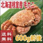 御中元 2017 北海道 根室産 毛蟹600g前後 (かに カニ 蟹)