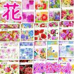 とにかくお花がいっぱいのウォーターネイルシール20枚セットボタニカル柄薔薇 マーガレット ローズ ハイビスカス 熱バタフライ 蝶 ドライフラワー 押し花柄