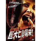 【送料無料選択可】洋画/恐怖のモンスターパニック 吸血巨大ヒル襲来!